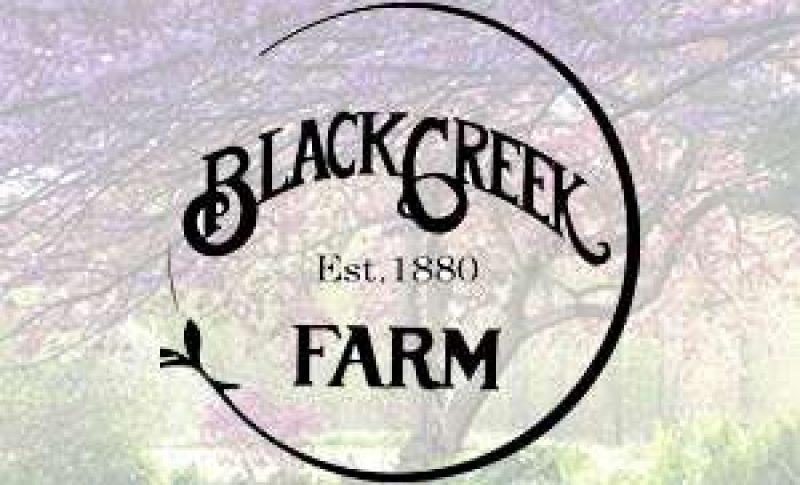 Black Creek Farm Logo